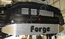 Intercooler FORGE for Fiesta Mk7 ST180